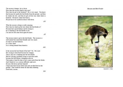 Racoon and Bird Feeder - Student Stories and Photograph - pages 46+47 from We Speak ... We Write ... We Read English